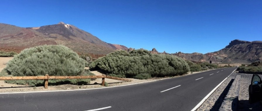 Driving in Tenerife