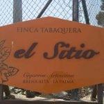 Finca El Sitio Tobacco Cigars La Palma
