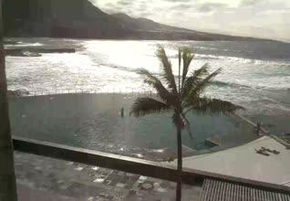 Punta de Hidalgo Webcam