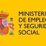 Social Security Number (Seguridad Social)